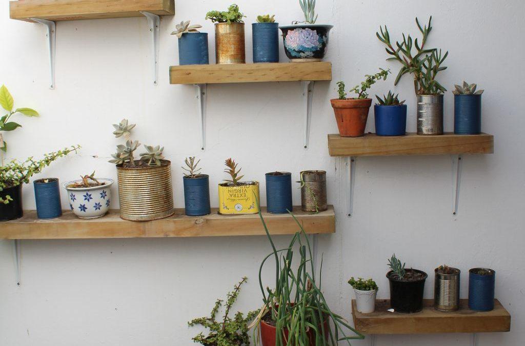 Tin Can Succulent Garden